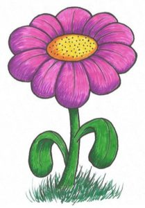 The Drawing Journey - Easy Flower Drawing - step by step