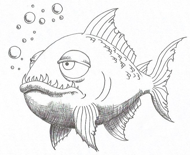 How to Draw a Piranha - Step Nine